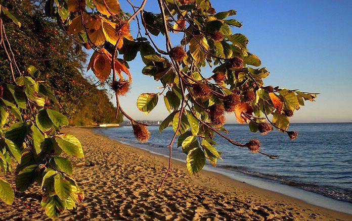 Czy jesienią warto wybrać się nad morze?