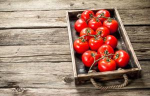 Jak odpowiednio uprawiać pomidory?