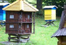 ciekawa aranżacja ula pszczelego